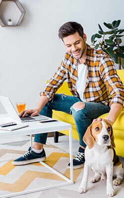 smiling-teleworker-using-laptop-in-living-room-wit-MVA38HB